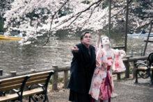 CHERRY BLOSSOMS (Kirschblüten – Hanami)